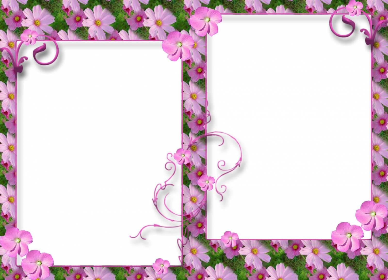 Рамки для фото разных цветов